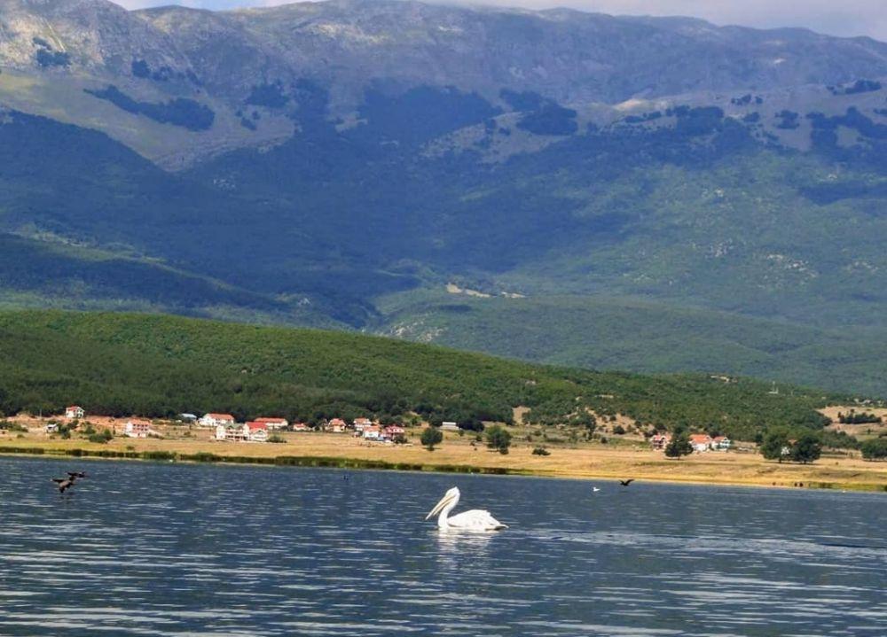 5 Taman Nasional Terbaik di Yunani, Pesonanya Bikin Tak Berkedip!